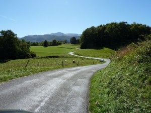 PyreneanRoadsforever